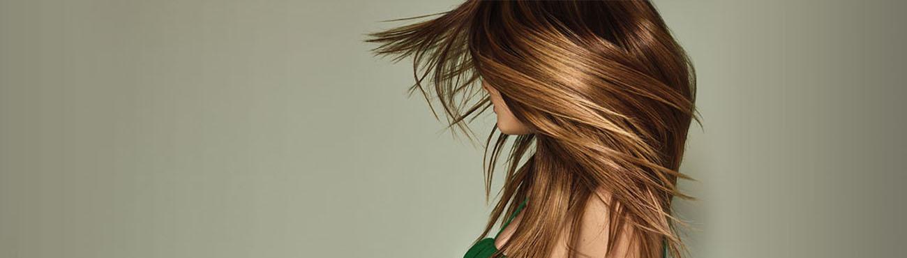Haircolor Treatments Ginger Bay Salon Spa Kirkwood And Town